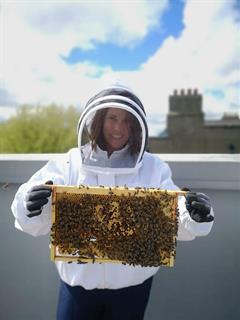 Beee happy in OCS